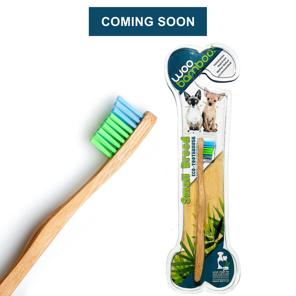 Pet Toothbrush Small Breed - 2 pack