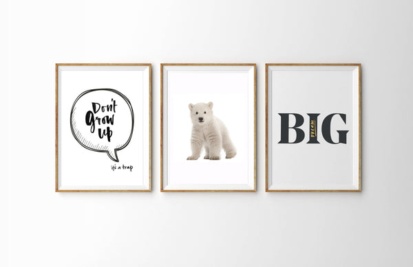 Don't Grow Up + Polar Bear + Dream Big