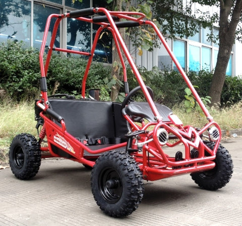 Trailmaster mini XRS+ kids 2 seater go kart