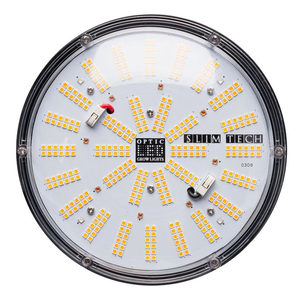 Slim Series LEDs