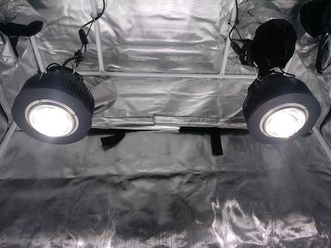 Cree Cob Led Grow Lights From Optic Led Canada