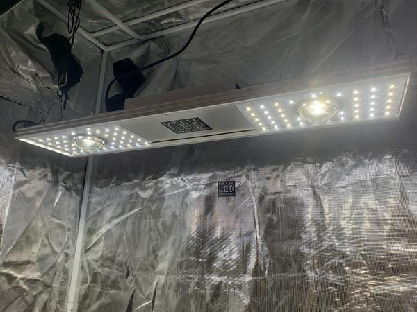 Optic 150 VEG Dimmable LED Grow Light 150w 5000k COBs