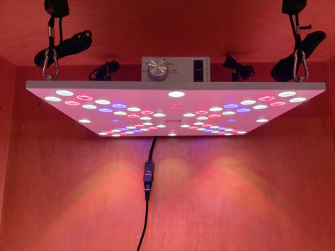 Bloom Enhancer Array 120w Dimmable LED Grow Light (UV & IR)