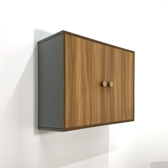 Wall-Hung Simple Cabinet (সহজ কেবিনেট)