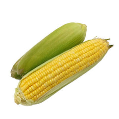 Sweet Corn on a Husk -2 count - Organic
