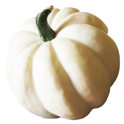 Seasonal Squash or Pumpkin - Organic