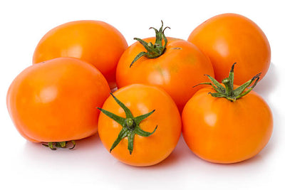 Orange Vine Ripe Tomatoes - Organic