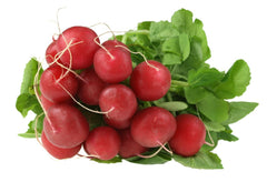 Radish 2-Bunch Pack- Organic