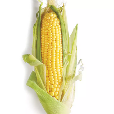Sweet Corn on a Husk - Organic