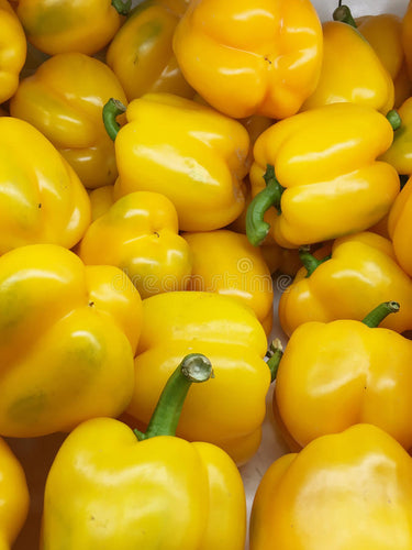 Yellow Bell Peppers - Organic