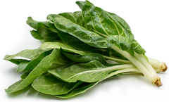Swiss Chard White 2 bunch - organic