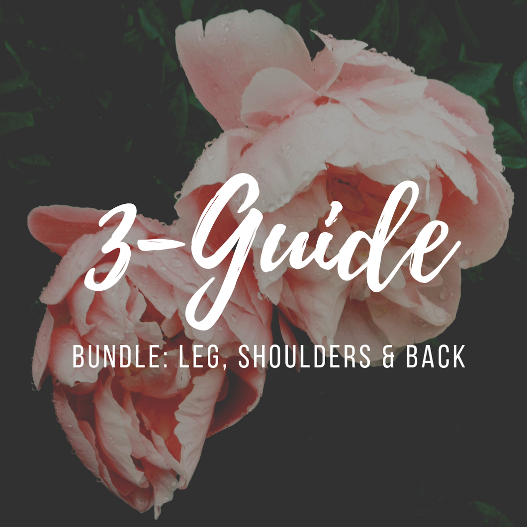 3-Guide Bundle