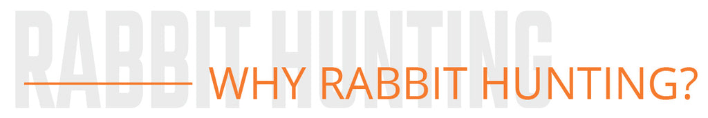 why rabbit hunting
