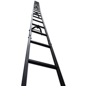 20' Mini Tree Ladder