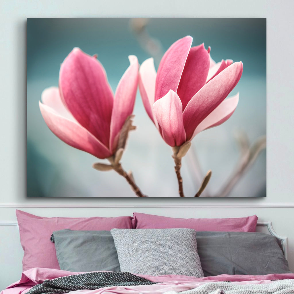Beautiful Magnolia