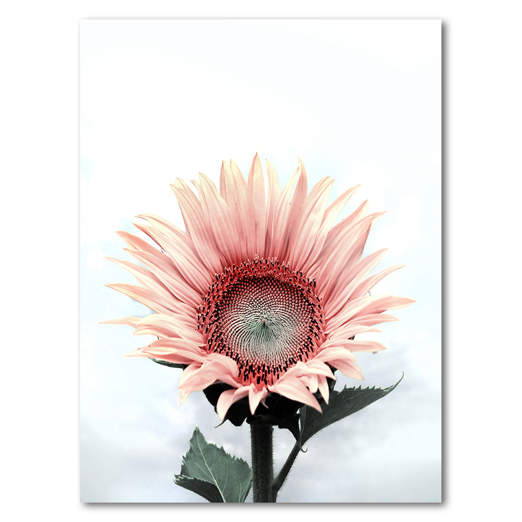 Tablou Canvas - Sunflower - Tablomag