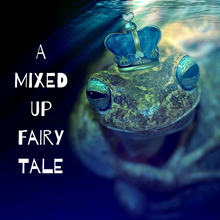 VIBookcrate Jr FEBRUARY 2019 Box - A Mixed Up Fairy Tale