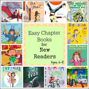 Early Reader Envelopes - Beginners Chapter Book Edition
