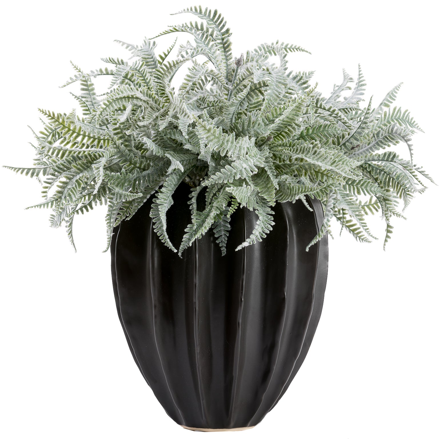 Coated Fern Arrangement