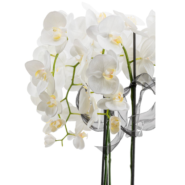 Orchid With White Bowl RTFact x LuxDeco Orchid With White Bowl