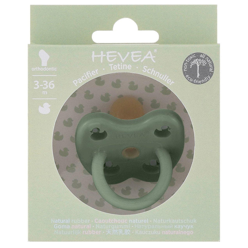 Hevea Pacifier / Orthodontic / 3-36M / Moss Green Duck