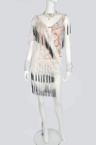 White Mesh and Gradation Fringe Latin Dress