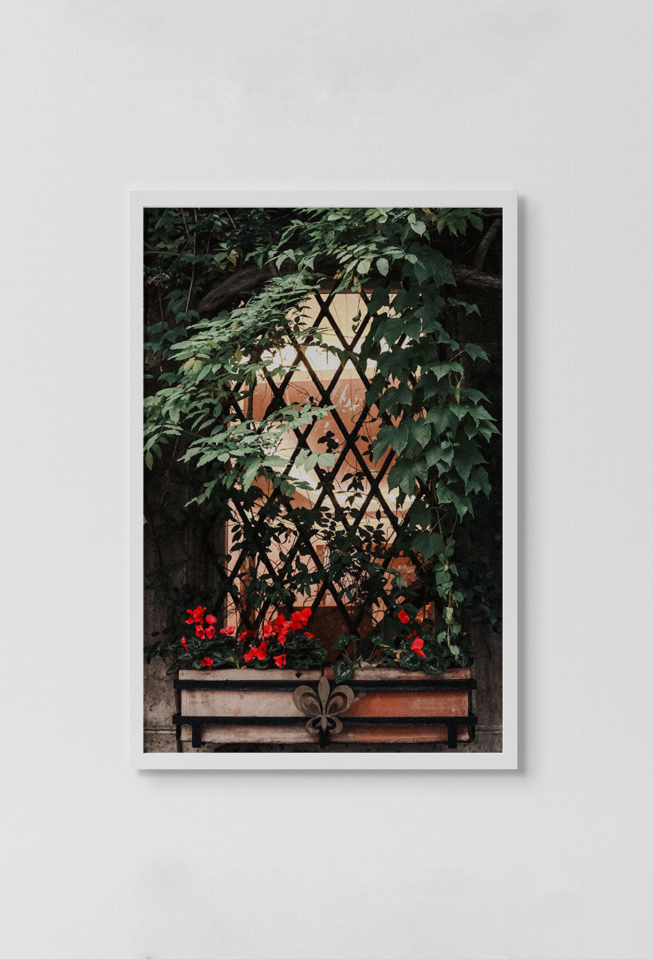 image of photo of glass window panes with hanging flower basket on outside of window and leaves over window in white frame on white wall.