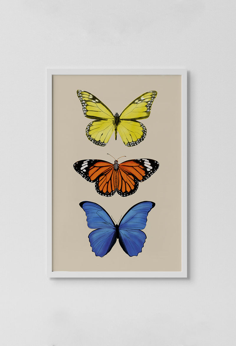 image of 3 butterflies on beige background in frame on white wall