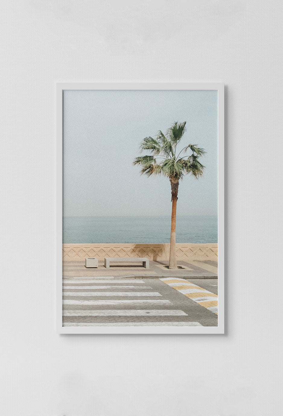 image of photo of palm tree on sidewalk and bench overlooking ocean in white frame on white wall.