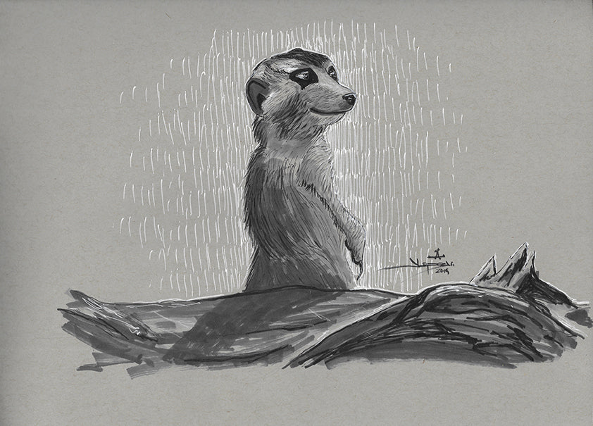Meerkat - Pen & Ink Drawing