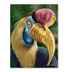 Stylized Red-Knobbed Hornbill