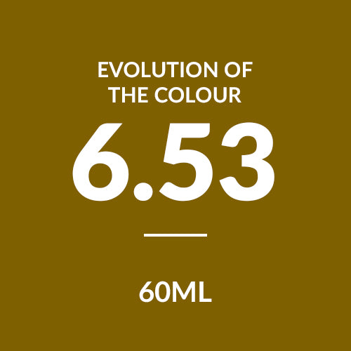 ALFAPARF Evolution Of Colour CUBE 6.53 (60ml)