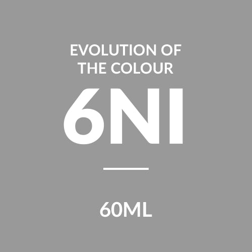 ALFAPARF Evolution Of Colour  CUBE 6NI (60ml)