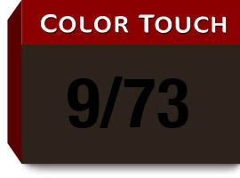 Color Touch Deep Browns 9/73