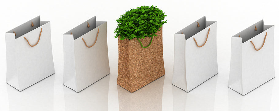 Eco-Friendly Bags: Alternatives to Conventional Plastics