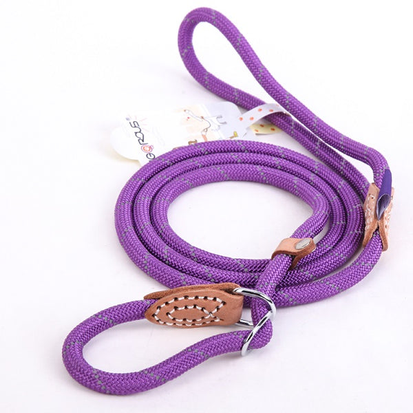 Breakaway Dog Leash Lead Basic Collar