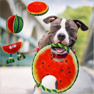 Canvas Watermelon Frisbee Rope Toy