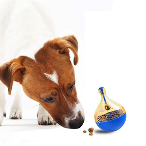Treat IQ - Interactive Food Dispensing Dog Toy