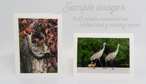 Greeting Cards with Mounted Photo