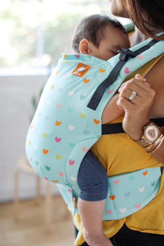 Playful - Tula Toddler Carrier