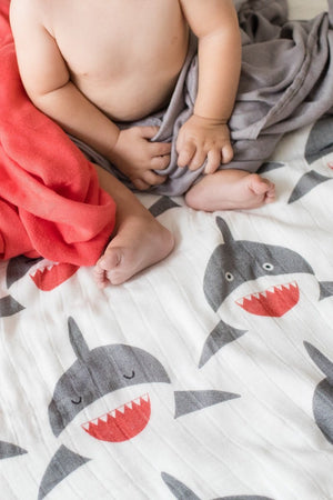 Chomp - Tula Baby Blanket Set