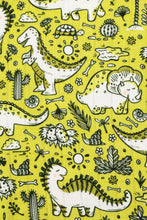 Cretaceous Party - Tula Cuddle Me Blanket