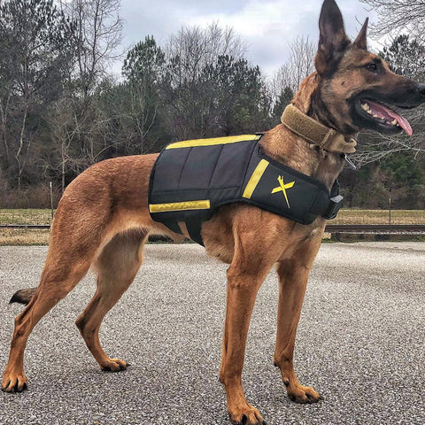 Canine weight vest for dogs, rottweilers, german shepherds