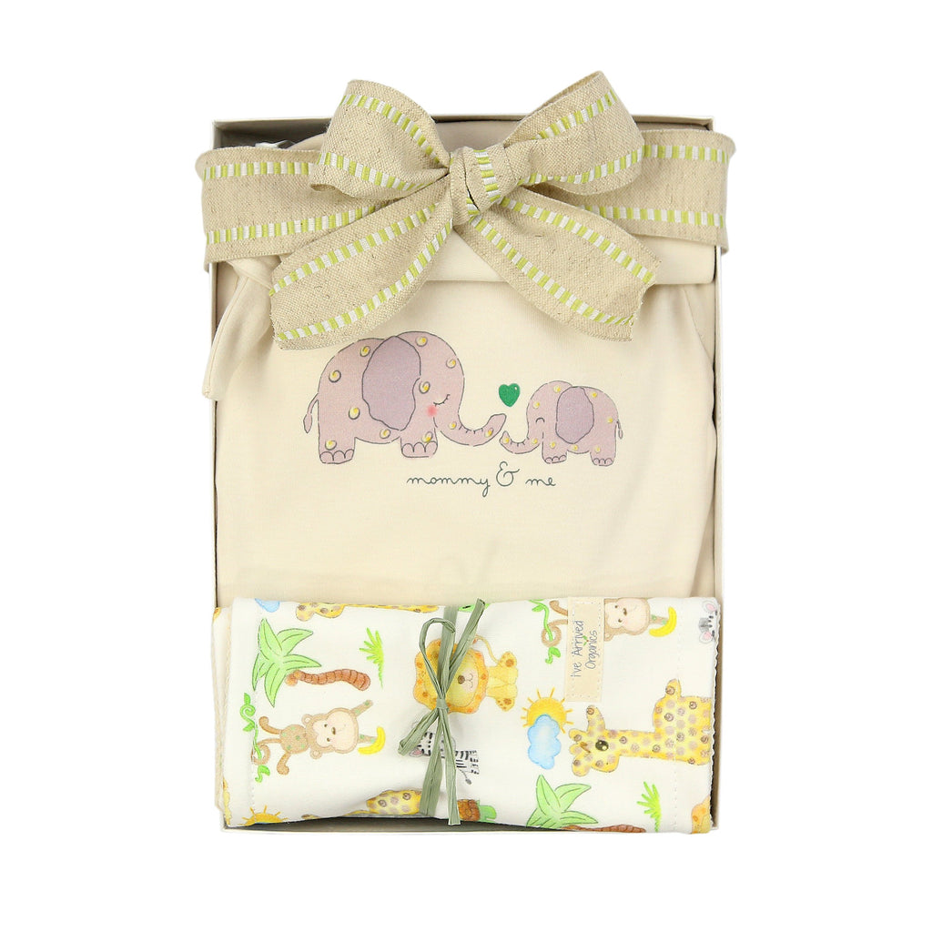 Organic Baby Gift Box Baby Boy Elephant Coming Home Baby Hello World Theme