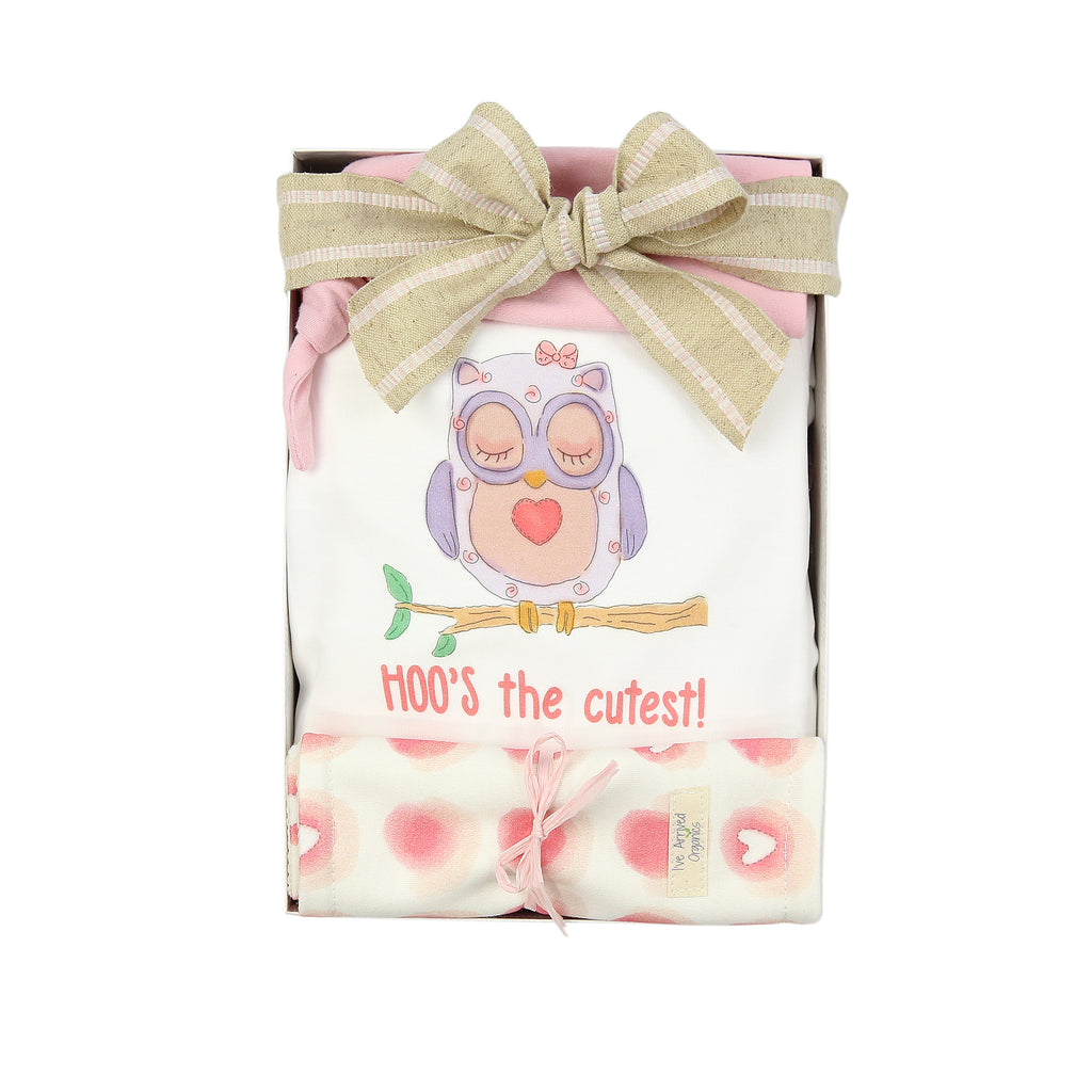 Organic Coming Home Baby Gift Box Baby Girl Owl Hoo's the Cutest Theme