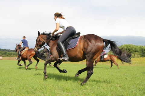 physical benefits of riding a horse