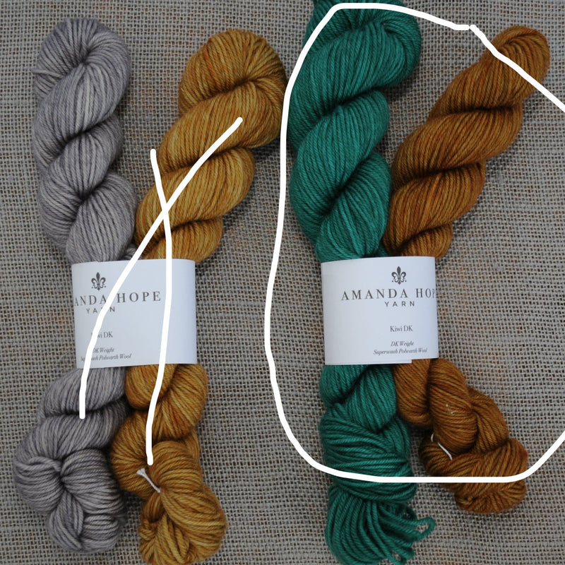 Two Half Skeins in a Kit, 50 grams each, Kiwi DK