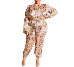 Plus Size Leopard Print Long Sleeve One Piece Jumpsuit