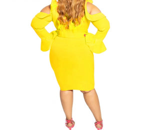 Plus Size Ruffled Long Sleeve V-Neck Dress