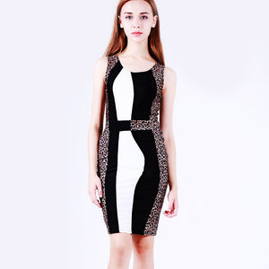 Women Sexy Leopard Print Dress Ladies V-neck Sleeveless Casual Party Dress TW - kats closet1